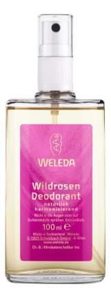 Дезодорант WELEDA Розовый 100 мл