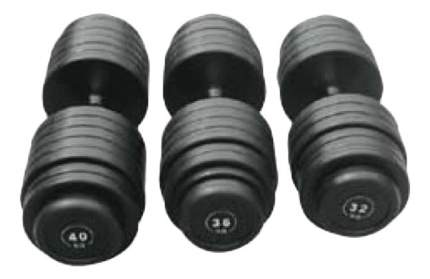 Гантельный ряд Body Solid FDS-09 от 2,5 до 30 кг