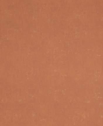 Обои виниловые флизелиновые BN International Indian Summer 218545