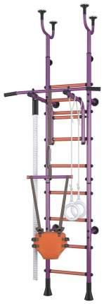 Детский спортивный комплекс Polini Sport Active Фиолетовый комбинированный