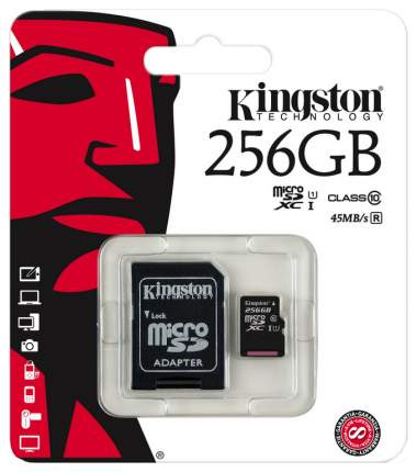 Карта памяти Kingston Micro SDXC SDC10G2 256GB