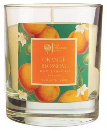 Ароматическая свеча Wax Lyrical Цветок апельсина 9 шт