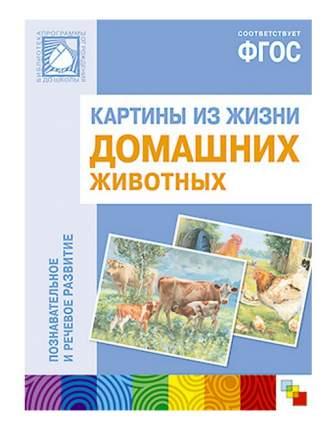 Книжка Школа Семи Гномов картины из Жизни Домашних Животных