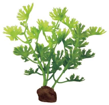 Искусственное растение ArtUniq Ranunculus inundatus Set 6x10 набор ART-1170512
