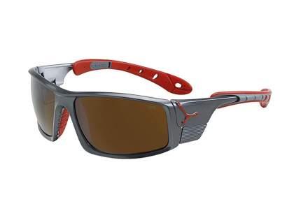 Очки Cebe Ice8000 темно-серый CBICE80002