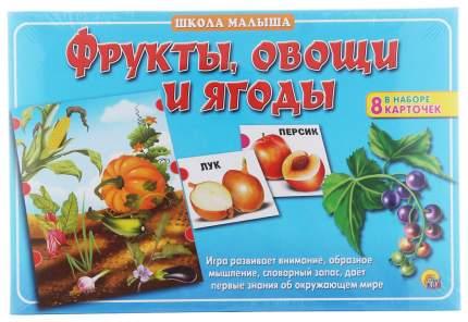 Дидактическая игра Рыжий кот Школа Малыша, Фрукты, овощи и ягоды