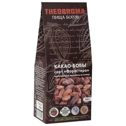 Какао бобы Theobroma Пища богов сорт форастеро 250 г