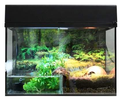 Палюдариум для рептилий Lucky Reptile Стартовый комплект для Амфибий, черный, 50x40x28 см