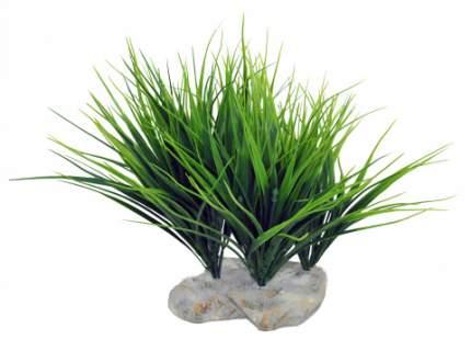 """Декоративное растение LUCKY REPTILE для террариумов """"Sumatra Grass"""""""