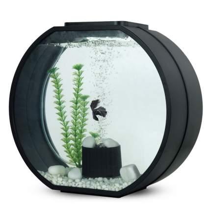 Аквариум для рыб AA-Aquariums DECO O, бесшовный, черный, 20 л