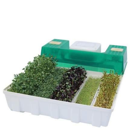 Фермы для растений EasyGreen EGL 55/00267