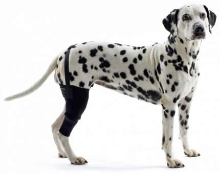 Протектор для собак Kruuse Rehab Knee Protector на правое колено, черный, XS