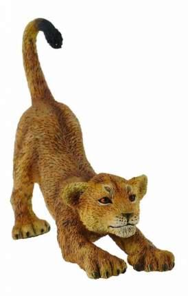 Фигурка collecta львенок потягивающийся s 88416b