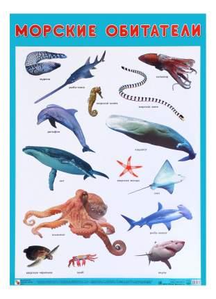 Интерактивный плакат Мозаика-Синтез Морские обитатели
