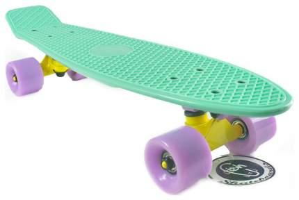 Пенни борд Fish Skateboards Fish Classic 56,5 x 15,2 см нежно-мятный