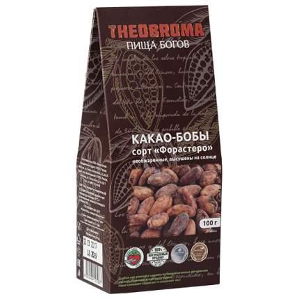 Какао бобы Theobroma Пища богов сорт форастеро 100 г