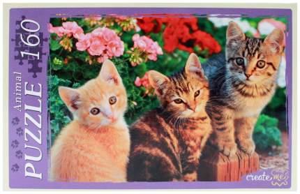 Пазл Рыжий кот Три котёнка 160 элементов П160-7213