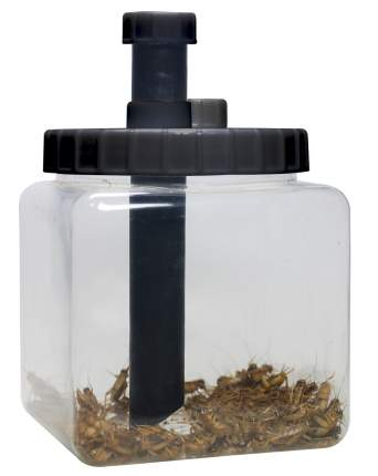 Контейнер для живого корма для рептилий LUCKY REPTILE Cricket Keeper, прозрачный