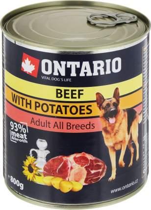 Консервы для собак Ontario, говядина и картофель, 800г