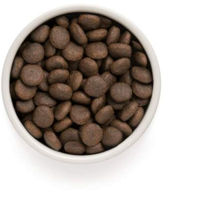 Сухой корм для собак ONE&ONLY Adult Maxi, для крупных пород, индейка с рисом, 3кг