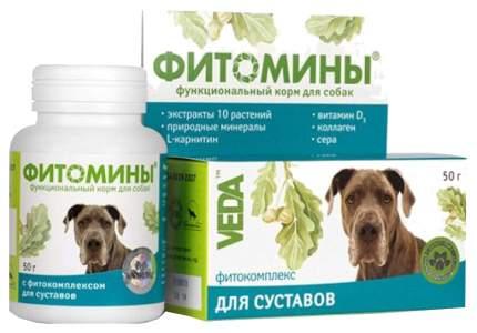 Витаминный комплекс для собак VEDA Фитомины, для суставов 100 таб