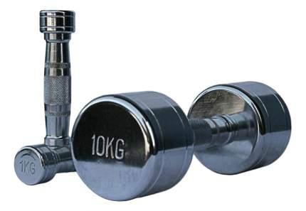 Гантельный ряд Alex D-04 от 1 до 10 кг