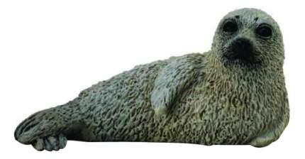 Фигурка Детёныш пятнистого тюленя S Collecta 88681b
