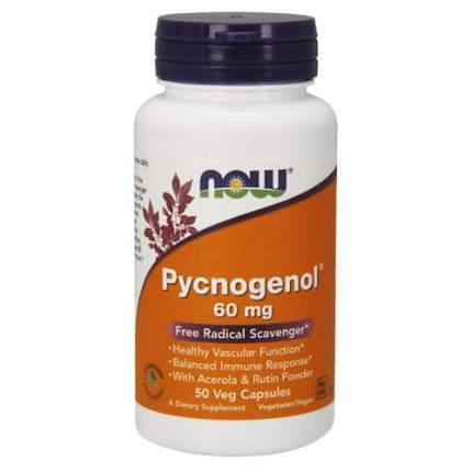 NOW Pycnogenol 60 мг (50 капсул) - пикногенол, экстракт французской морской сосны