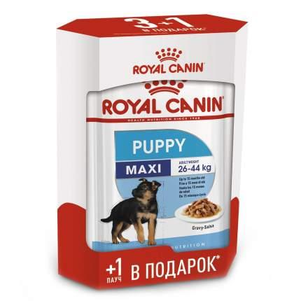Паучи Royal Canin Maxi Puppy для щенков крупных пород (140 г (3+1))