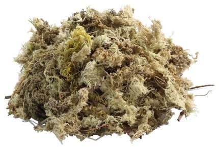 Грунт для аквариума Repti Zoo Натуральный мох сфагнум сушеный в брикете 100 г