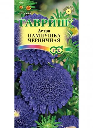 Семена Астра Пампушка Черничная, 0,3 г Гавриш