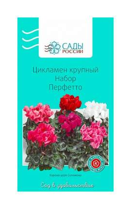 Семена Цикламен крупный Набор Перфетто, 3 шт, Сады России