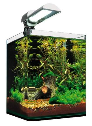 Нано-аквариум для рыб, креветок, ракообразных NanoCube Complete Plus LED, 10 л