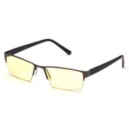 Очки для компьютера SP Glasses AF091 Grey