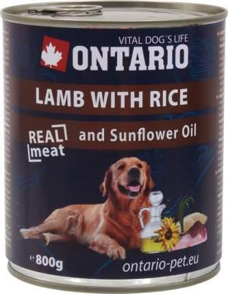 Консервы для собак Ontario, ягненок и рис, 800г