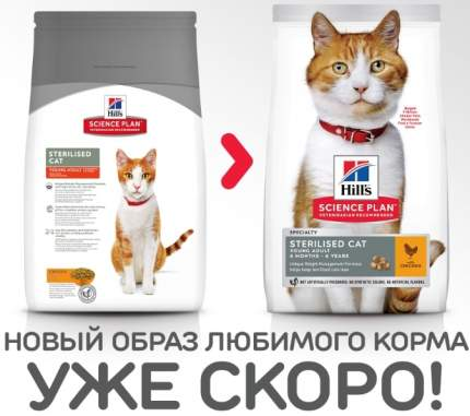 Сухой корм для кошек Hill's Science Plan Sterilised, для стерилизованных, курица, 0,3кг