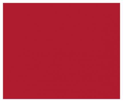 Акриловая краска Maimeri Acrilico M0924254 ализариновый красный прочный 200 мл