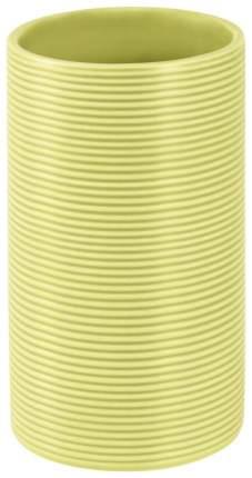 Стакан для зубных щеток Spirella Tube Ribbed Зеленый