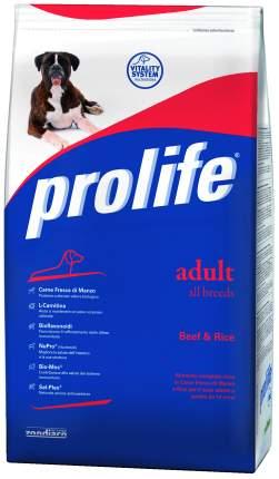 Сухой корм для собак Prolife Holistic Adult All Breeds Beef & Rice, говядина, рис, 0.8кг