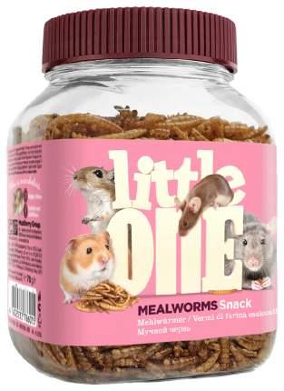 Лакомство для крыс, мышей, песчанок, хомяков Little One Мучной червь, 70г