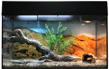 Террариум LUCKY REPTILE Стартовый комплект для Бородатых Агам, черный, 80 x 52 x 40 см