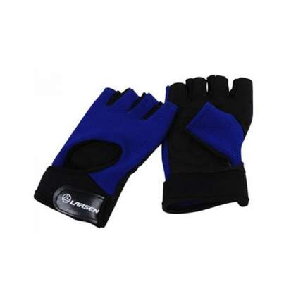 Перчатки для фитнеса Larsen NT558B черно-синие L