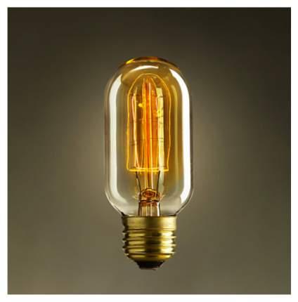 Накаливания лампа Restoration Hardware T45 Прозрачный