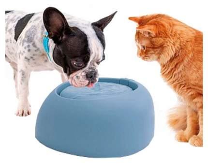 Автопоилка-фонтан для кошек и собак IMAC, голубой, 2 л