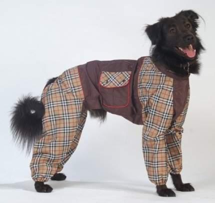 Комбинезон для собак ТУЗИК Бульмастиф мужской, в ассортименте, длина спины 66 см