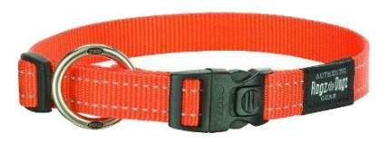 Ошейник ROGZ Utility 20мм, 34-56см, оранжевый