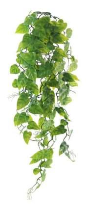 Reptizoo Растение 61LP Сциндапсус, 600 мм