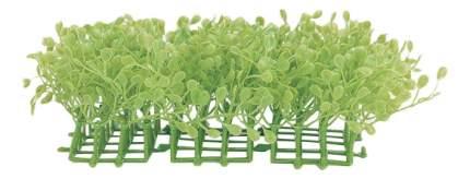Hagen Растение пластиковое коврик Лезимахия, 3 шт
