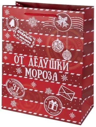 "Пакет бумажный ""От дедушки Мороза"", 17,8х22,9х9,8 см"