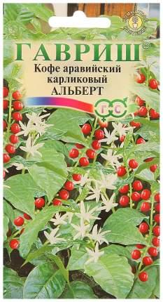 Семена Кофе аравийский карликовый Альберт, 5 шт, Гавриш